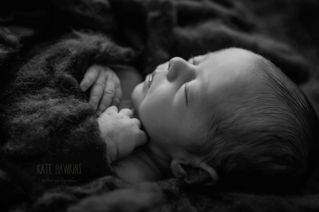 Moncton newborn photographer , moncton newborn photography, moncton photographer, newborn photography
